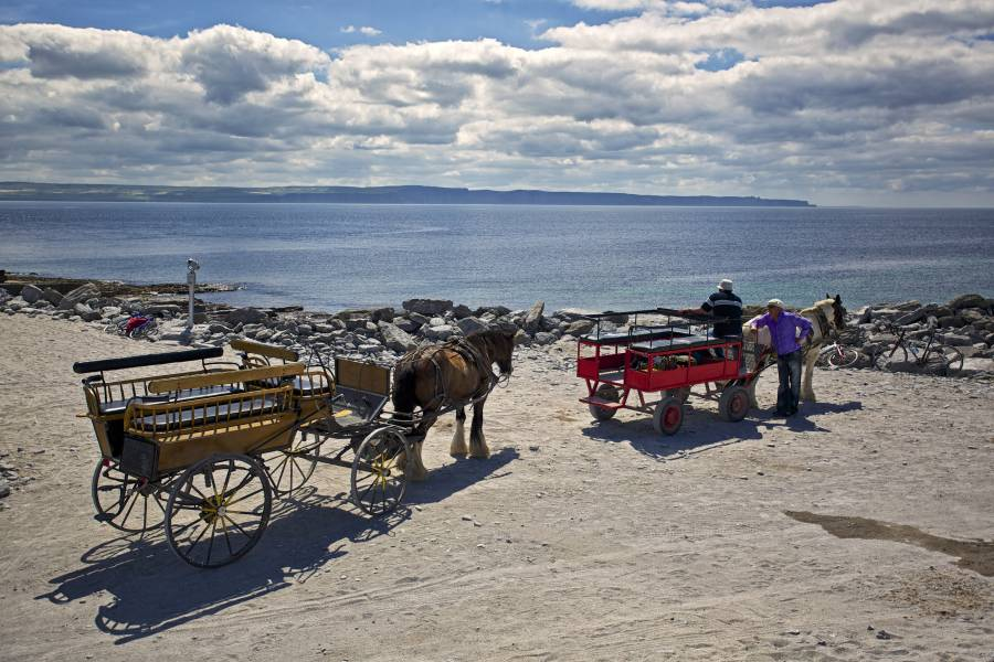 Horse and Cart Tour on Inisheer Aran Islands